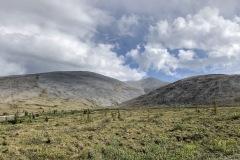 Tundra reaches rock.
