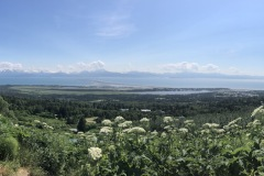 View from the bluff in Homer, AK