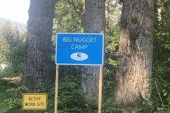 The Big nugget
